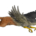 uploads griffin griffin PNG61 21