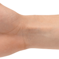 uploads hands hands PNG853 77