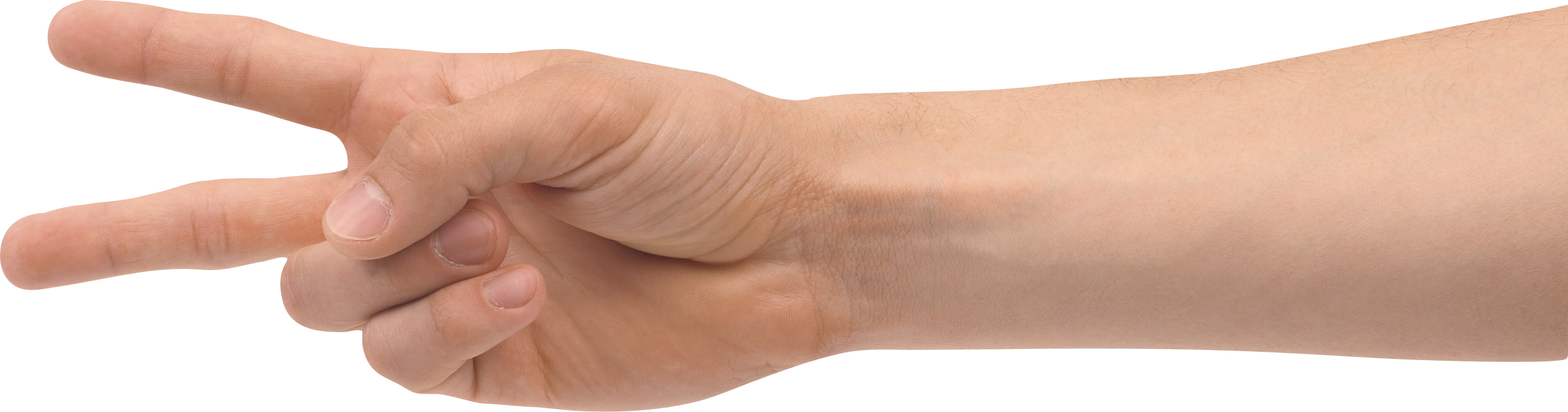 uploads hands hands PNG858 4