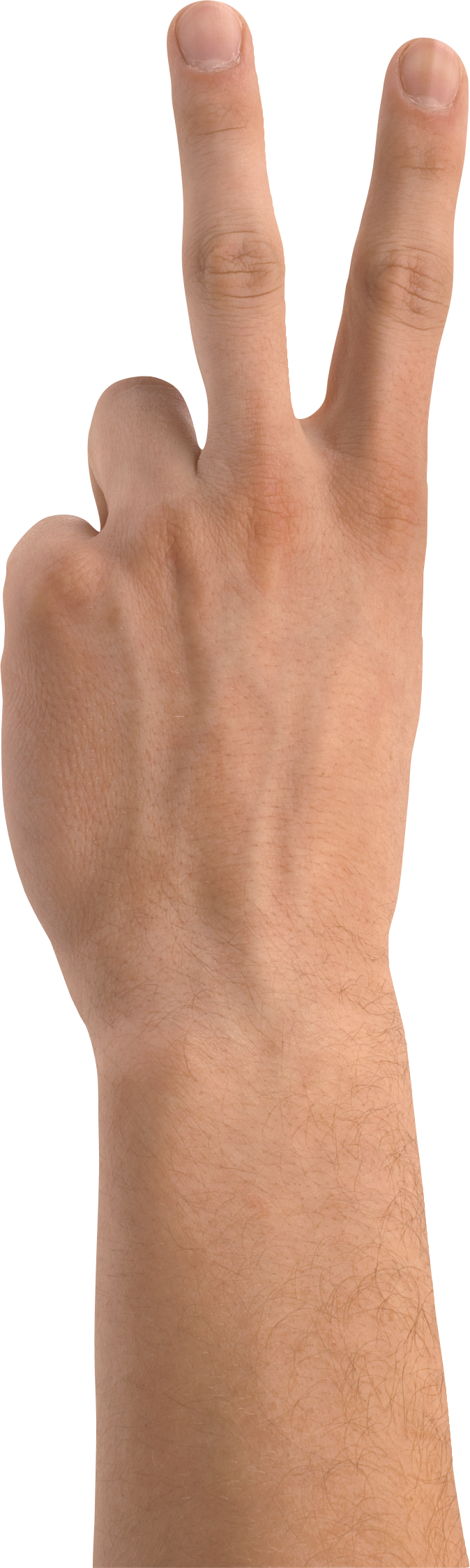 uploads hands hands PNG891 43