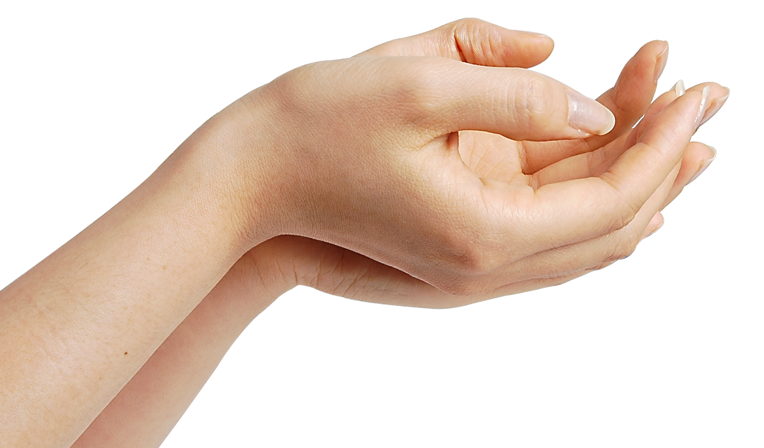 uploads hands hands PNG894 4