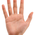 uploads hands hands PNG905 58