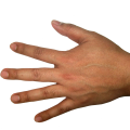 uploads hands hands PNG907 78