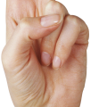 uploads hands hands PNG932 65