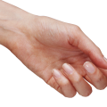 uploads hands hands PNG936 56