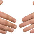 uploads hands hands PNG942 84