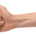 uploads hands hands PNG944 45