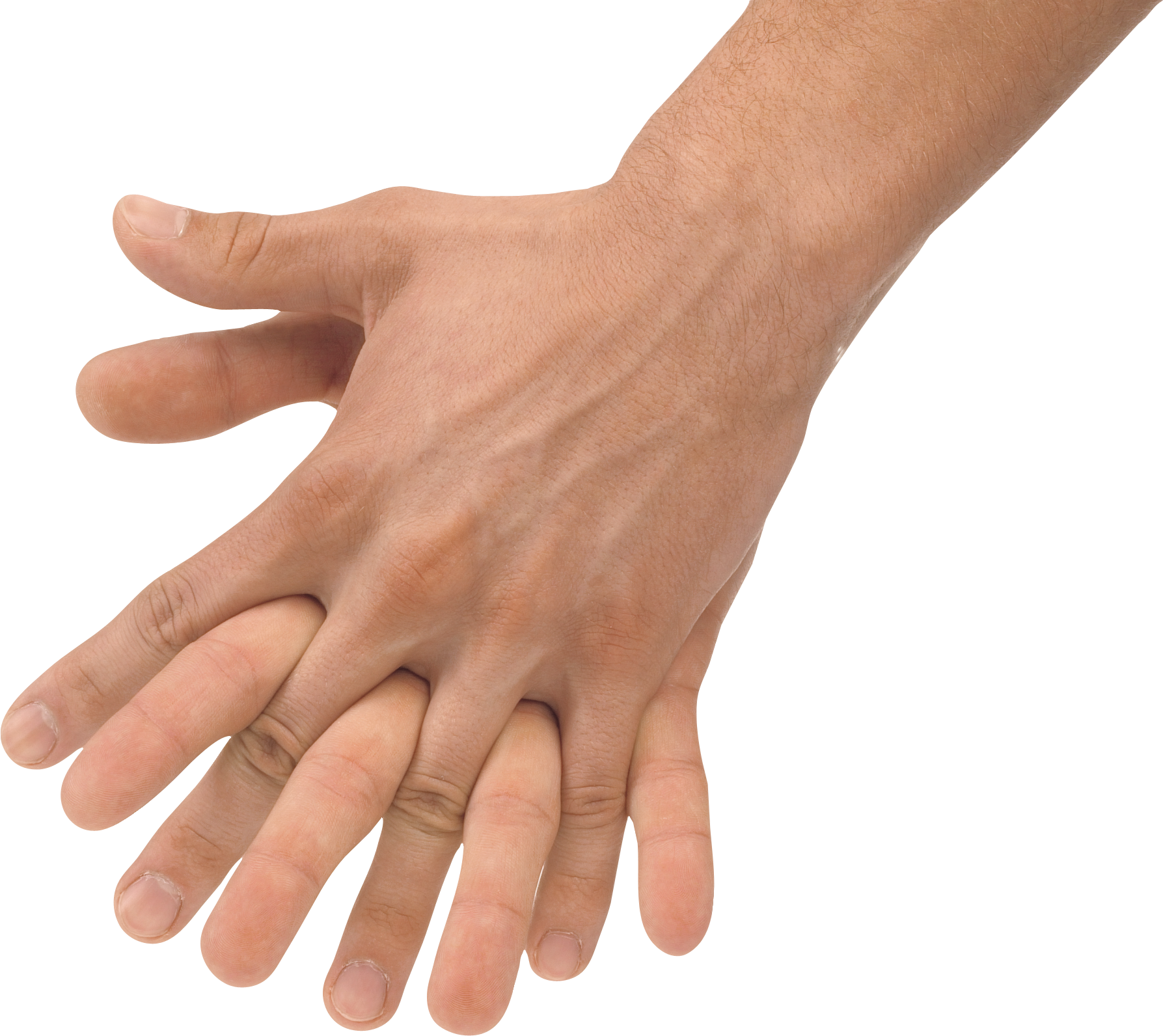 uploads hands hands PNG957 5
