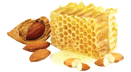 uploads honey honey PNG86285 4