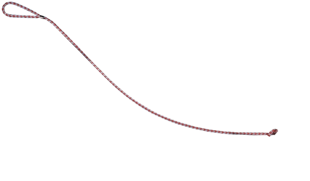 uploads leash leash PNG110 4