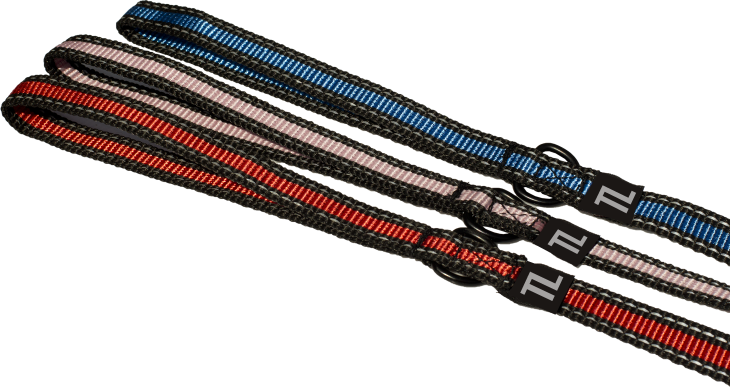 uploads leash leash PNG130 4