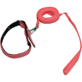 uploads leash leash PNG17 7