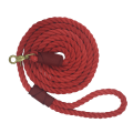 uploads leash leash PNG8 9