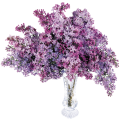 uploads lilac lilac PNG102 22