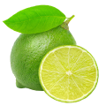 uploads lime lime PNG14 21