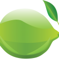 uploads lime lime PNG30 8