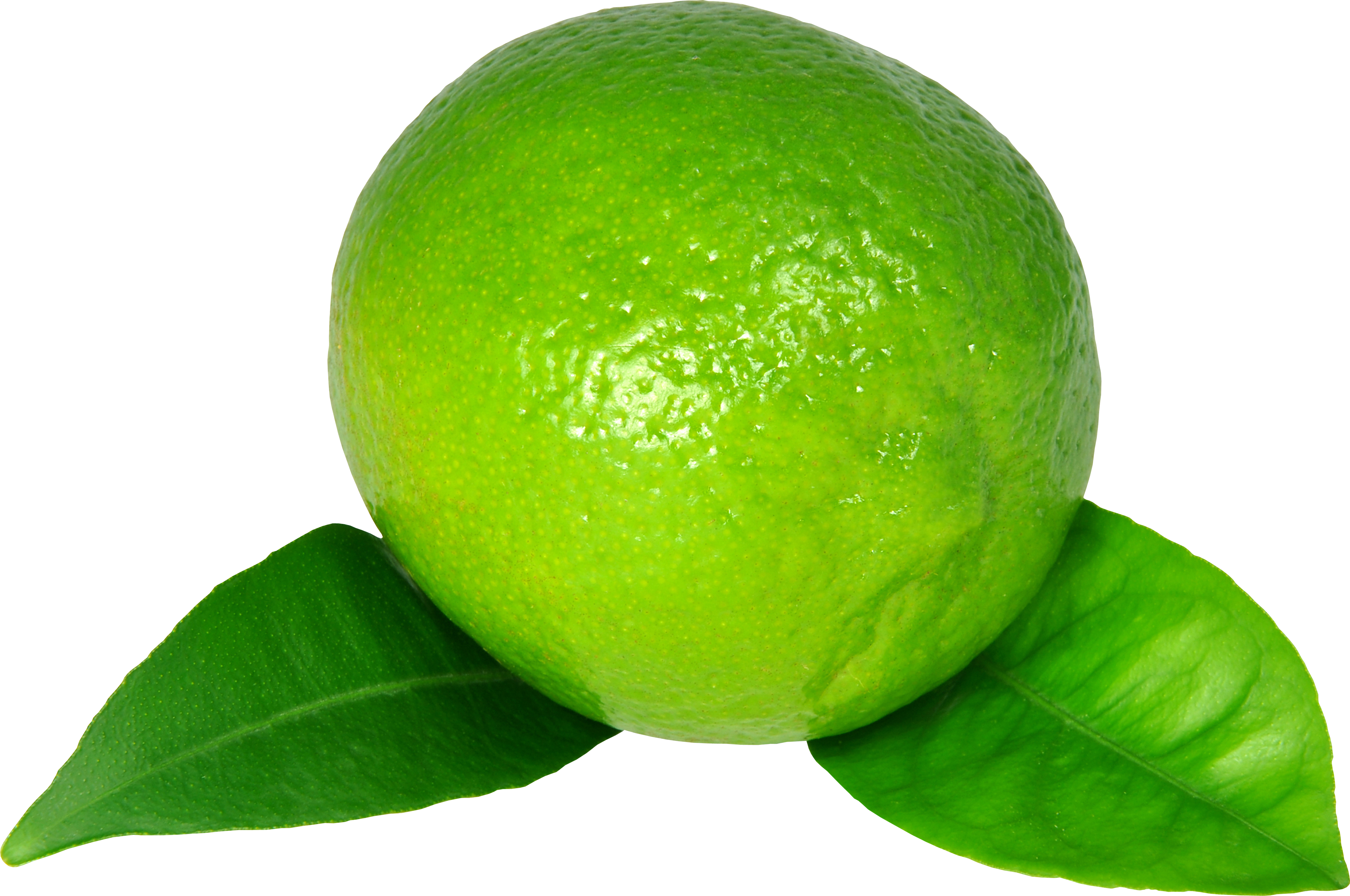 uploads lime lime PNG4 3