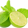 uploads lime lime PNG42 25