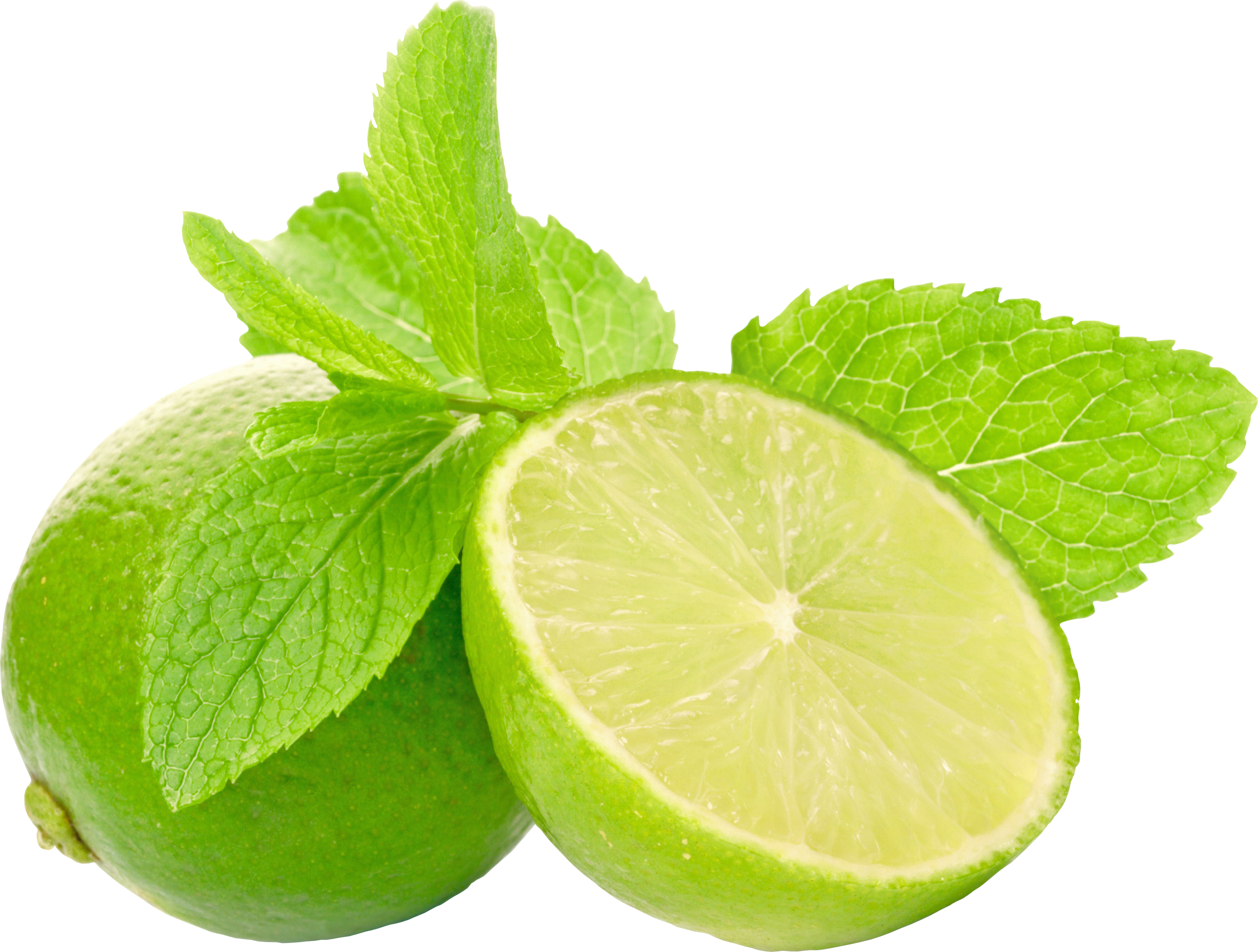 uploads lime lime PNG42 4