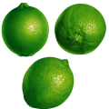 uploads lime lime PNG5 19