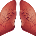 uploads lung lung PNG10 12