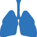 uploads lung lung PNG16 25