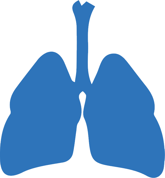 uploads lung lung PNG16 24