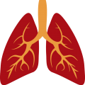 uploads lung lung PNG18 7