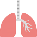 uploads lung lung PNG2 21