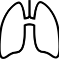 uploads lung lung PNG20 6