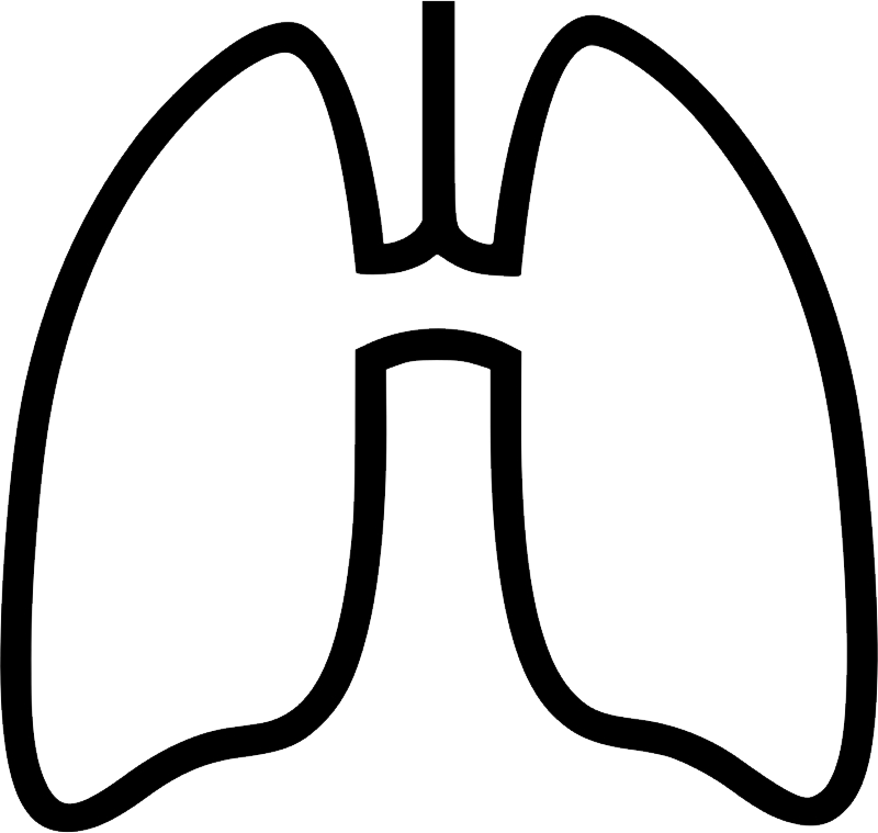 uploads lung lung PNG20 4