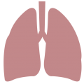 uploads lung lung PNG31 18
