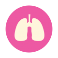 uploads lung lung PNG37 16