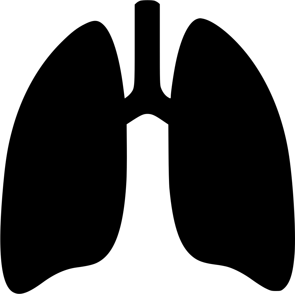 uploads lung lung PNG41 25