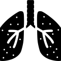 uploads lung lung PNG45 12