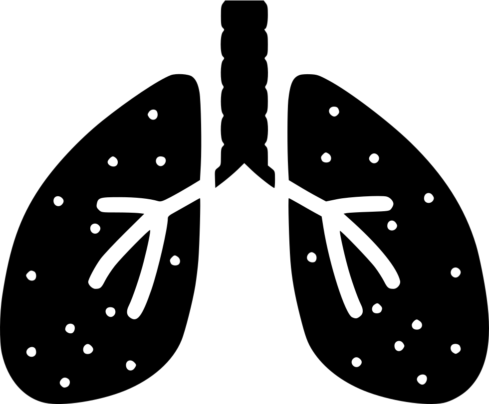 uploads lung lung PNG45 4