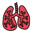 uploads lung lung PNG48 22