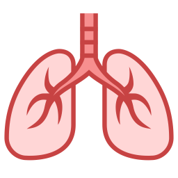 uploads lung lung PNG59 3
