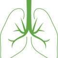 uploads lung lung PNG66 19