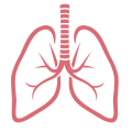 uploads lung lung PNG71 24