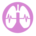 uploads lung lung PNG76 19