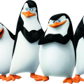 uploads madagascar penguins madagascar penguins PNG15 21