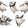 uploads madagascar penguins madagascar penguins PNG68 9