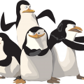 uploads madagascar penguins madagascar penguins PNG69 18