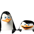uploads madagascar penguins madagascar penguins PNG89 20
