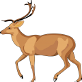 uploads moose moose PNG14 68