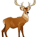 uploads moose moose PNG15 83