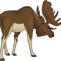 uploads moose moose PNG36 76