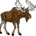 uploads moose moose PNG55 82