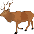 uploads moose moose PNG62 77